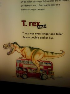 nhm fun facts
