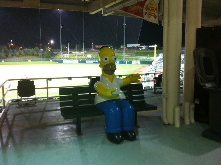 Homer simpson Albuquerque isotopes